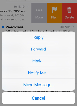 Screenshot of iPhone move messages screen